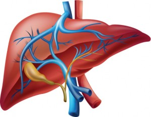 Findings from a recent study indicate that sildenafil, better known as Viagra, could help protect the liver from the potentially life-threatening damage caused by sepsis.