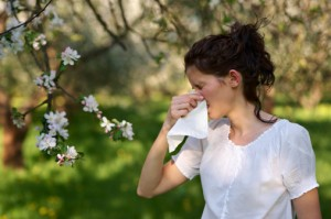 While some cold and allergy symptoms are very similar, you can usually blame allergies if symptoms begin shortly after exposure to a known allergen.