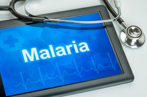 Malaria, a parasitic infection, kills roughly half a million people worldwide each year.