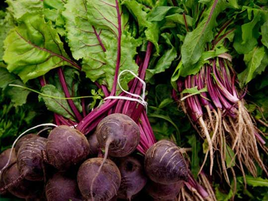 Beets Naturally High in Nitrate Can Increase Blood Flow and Lower Erectile Dysfunction Risks