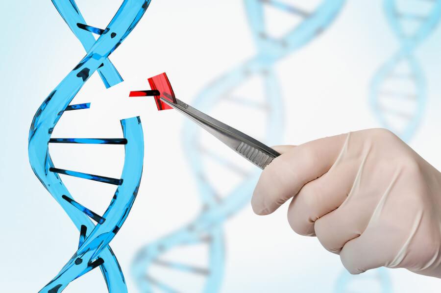 DNA helix.