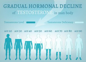 Gradual hormonal decline of testosterone by age.